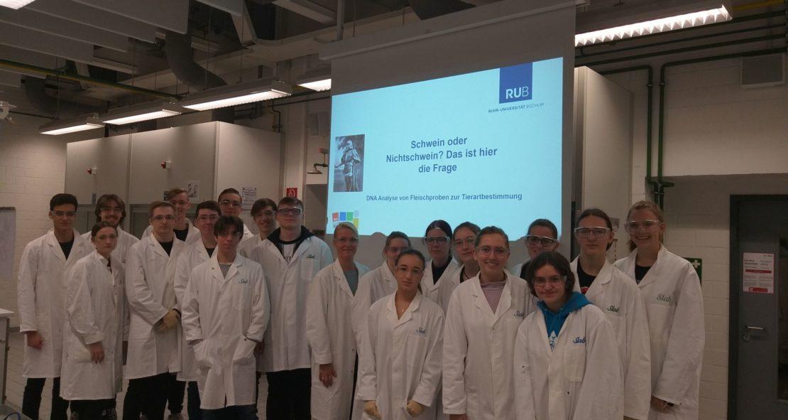 Schwein oder Nicht-Schwein? – Exkursion des Biologie Leistungskurses zur RUB